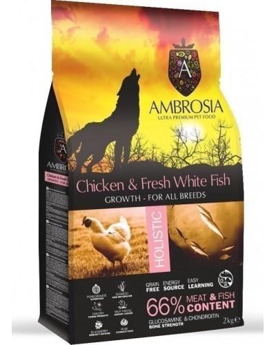AMBROSIA GRAIN FREE GROWTH CHICKEN & FRESH FISH 2KG (ΚΟΥΤΑΒΙΟΥ)