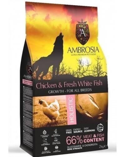AMBROSIA GRAIN FREE GROWTH CHICKEN & FRESH FISH (ΚΟΥΤΑΒΙΟΥ) 12KG