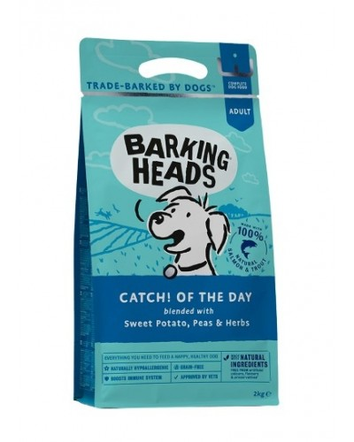 BARKING HEADS CATCH OF THE DAY SALMON & TROUT GRAIN FREE 2kg