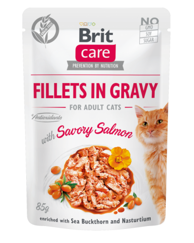 BRIT CARE POUCHES ADULT WITH SALMON IN GRAVY 85GR