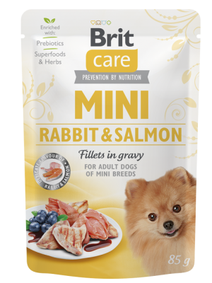 BRIT CARE MINI RABBIT & SALMON 85GR