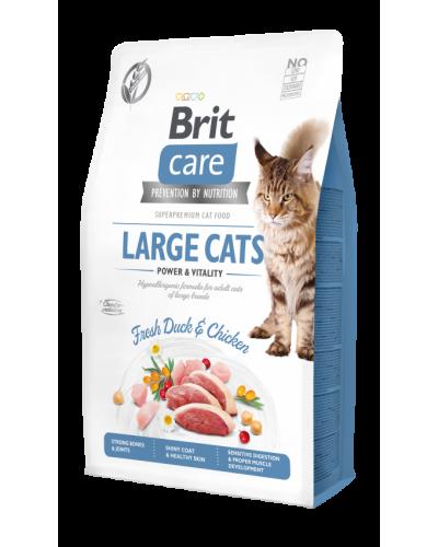 BRIT CARE LARGE CAT GRAIN FREE DUCK & CHICKEN 2KG