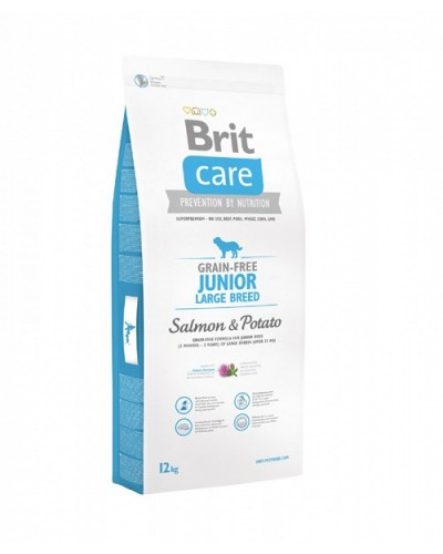 BRIT CARE JUNIOR LARGE GRAIN FREE SALMON & POTATO 1KG