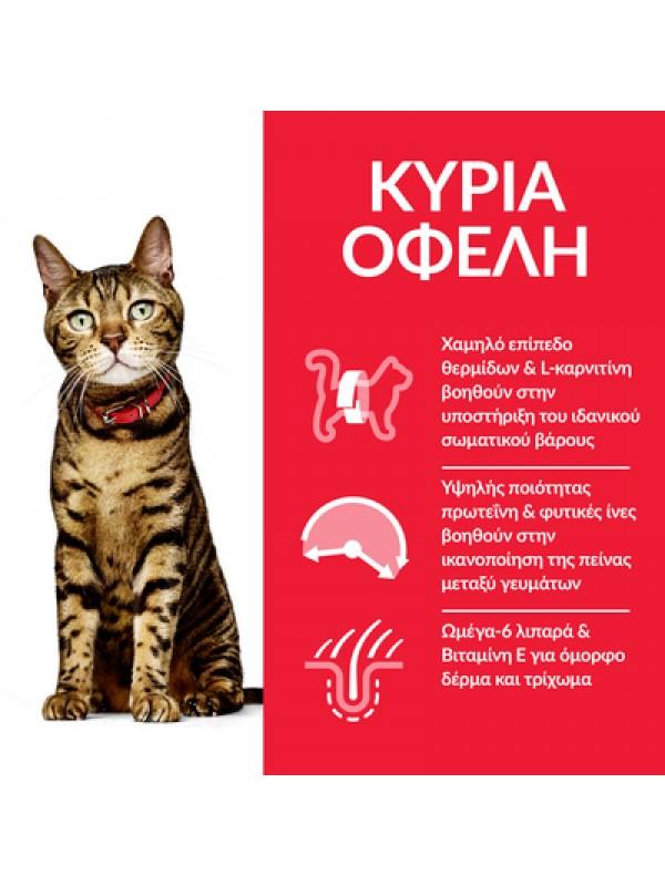HILL'S CAT LIGHT ΚΟΤΟΠΟΥΛΟ 3kg