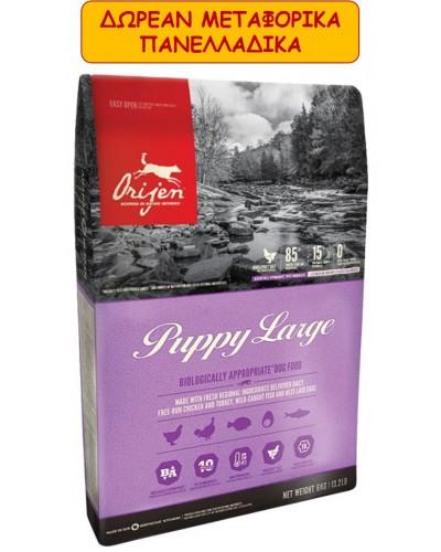 ORIJEN PUPPY LARGE BREED 11,4kg
