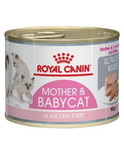 ROYAL CANIN BABYCAT INSTICTIVE 195gr