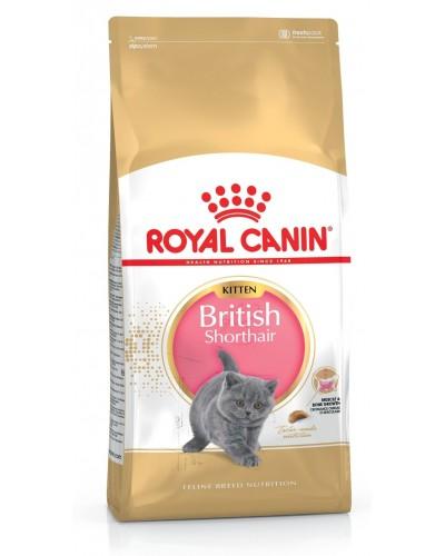 ROYAL CANIN KITTEN BRITISH SHORTHAIR 2kg