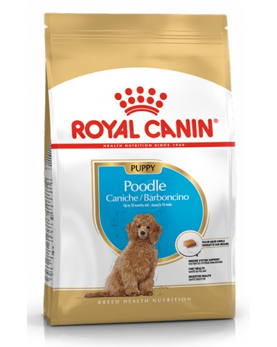 ROYAL CANIN POODLE PUPPY 3kg