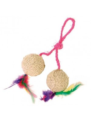 2 Balls on a Rope