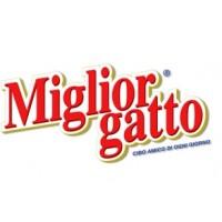 MIGLIOR GATTO